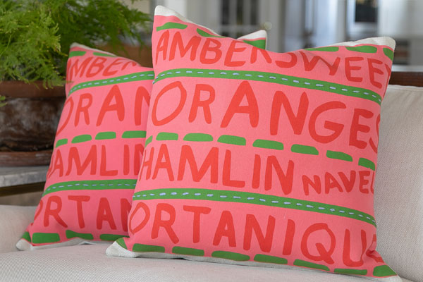 Close up of printed words pillows